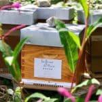 Les fermes de Marie - Rhododendron