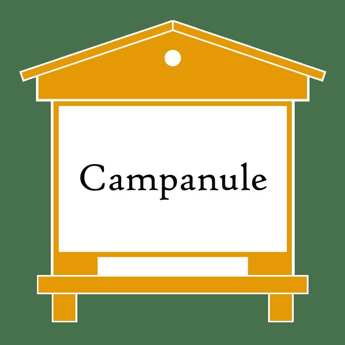 ruches Campanule