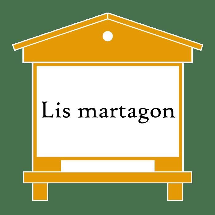 ruche Lis martagon