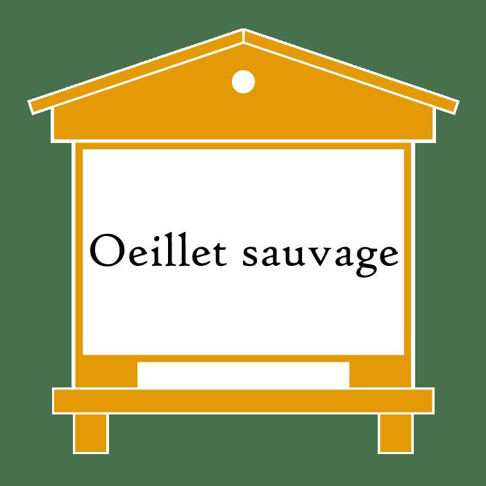 ruche Oeillet sauvage