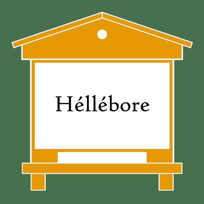 ruche-hellebore-produit