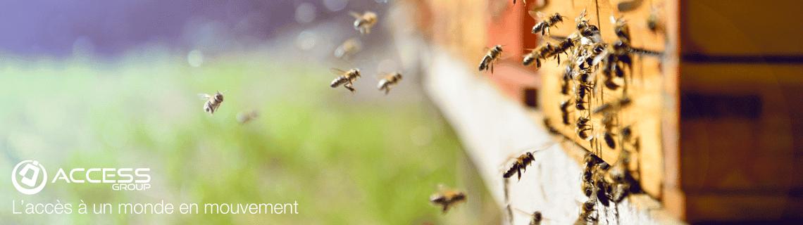 L'entreprise Access Group mécène 4 ruches avec l'association confidences d'abeilles. Soucieuse de l'environnement, des abeilles,des apiculteurs, elle s'engage pour la biodiversité et l'apiculture française en parrainer une ruche.
