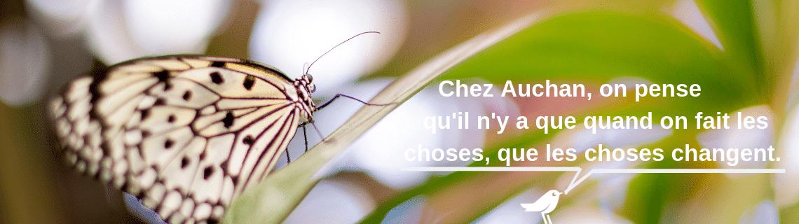 L'entreprise Auchan mécène 2 ruches avec l'association confidences d'abeilles. Soucieuse de l'environnement, des abeilles,des apiculteurs, elle s'engage pour la biodiversité et l'apiculture française en parrainer une ruche.