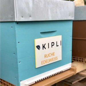 Kipli - Edelweiss